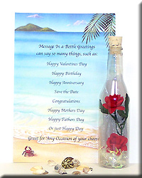 Message Bottle Double Red Roses